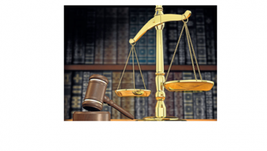 gestion legislativa